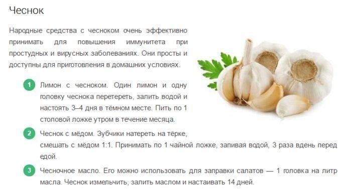 Травы, повышающие иммунитет | компетентно о здоровье на ilive