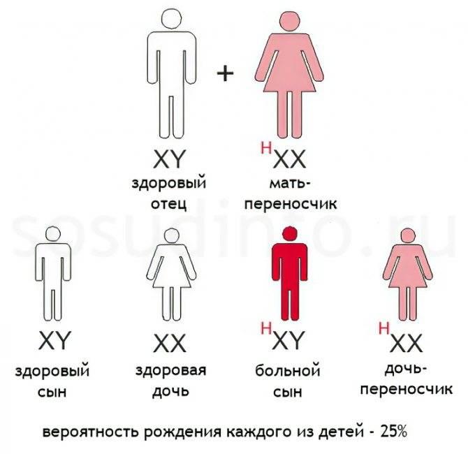 Гемофильная инфекция у детей - симптомы болезни, профилактика и лечение гемофильной инфекции у детей, причины заболевания и его диагностика на eurolab