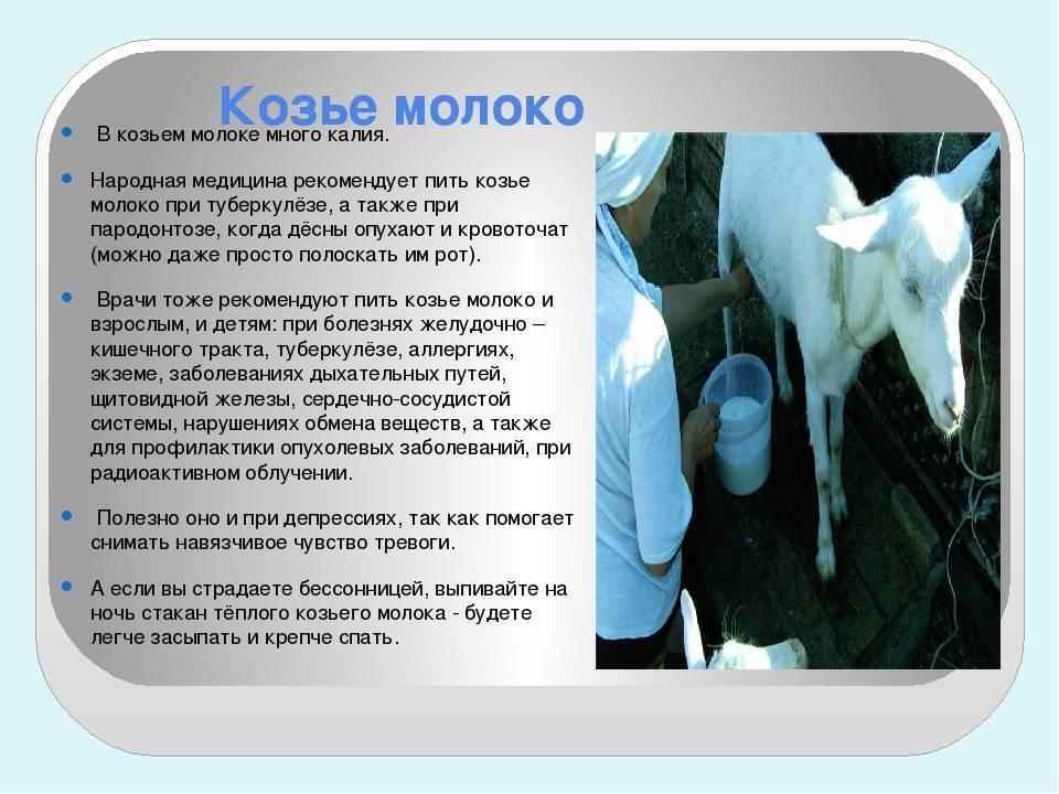 Молоко — с какого возраста можно давать ребенку: коровье, козье, комаровский | прекрасная леди