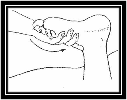 Массаж и лечебная физкультура (лфк)
