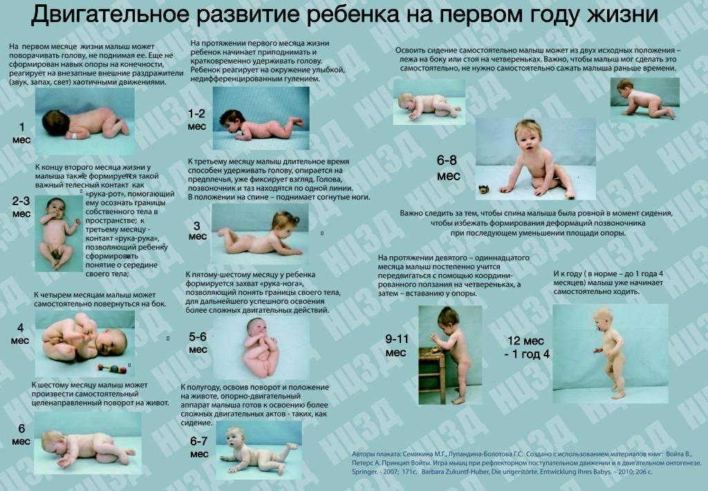 Развитие ребенка 11 месяца жизни. календарь развития