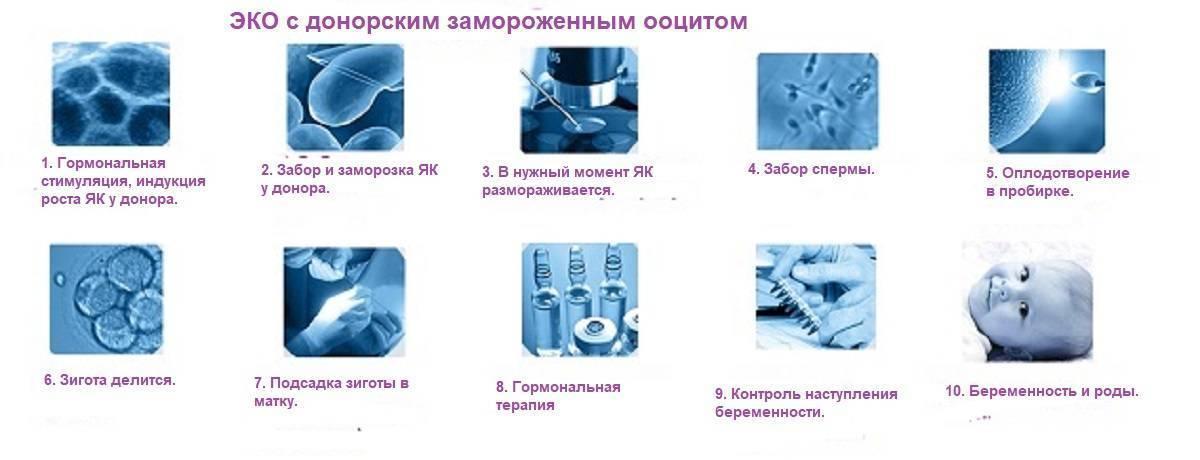 Эко с двойной стимуляцией (duostim)