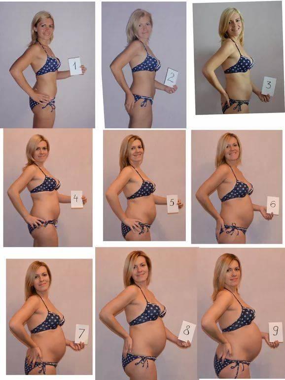 Узи при беременности. узи плода. выявление возможных пороков развития плода