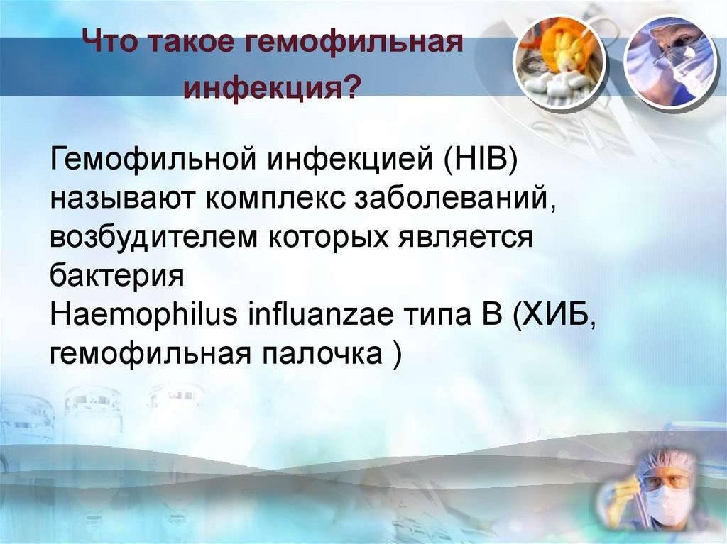Гемофильная палочка, днк haemophilus spp.