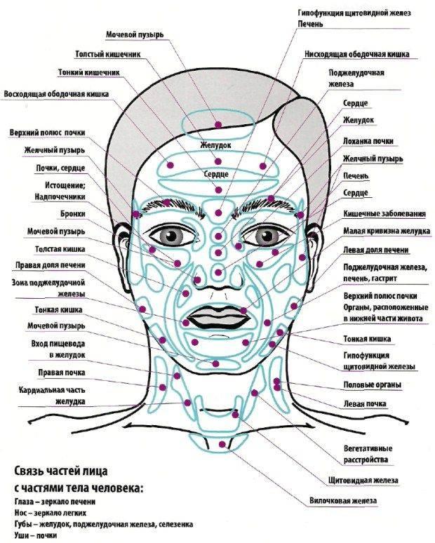 Фурункул – лечение антибиотиками, мазь, как выглядит на лице, фото