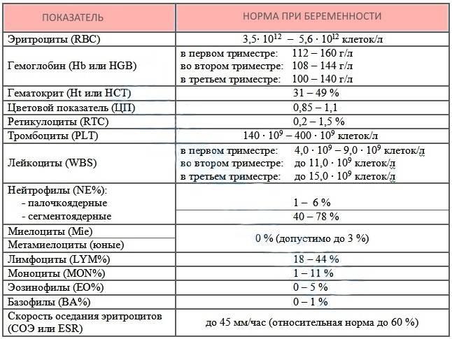 Анемия и беременность: как повысить гемоглобин? – клиника «9 месяцев»