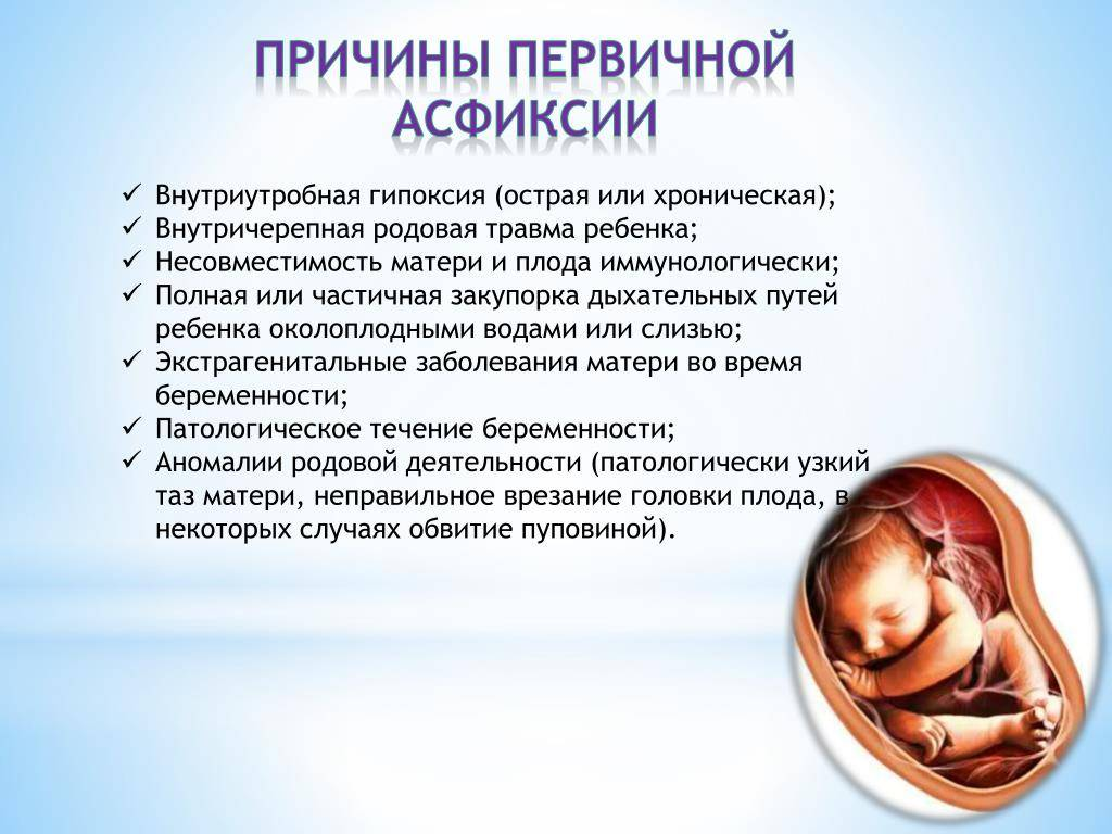Замершая беременность на узи: как определяют, как выглядит?