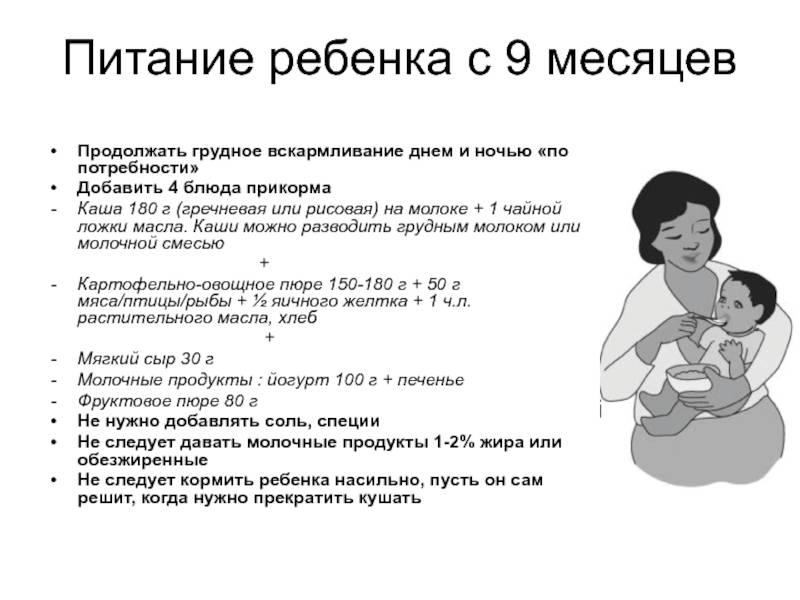 Чем кормить ребенка при температуре: советы врачей