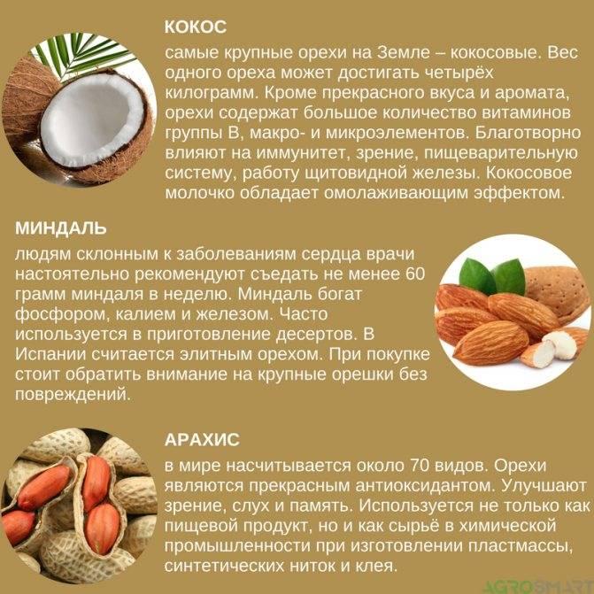 Можно ли кокос при грудном вскармливании: польза, противопоказания