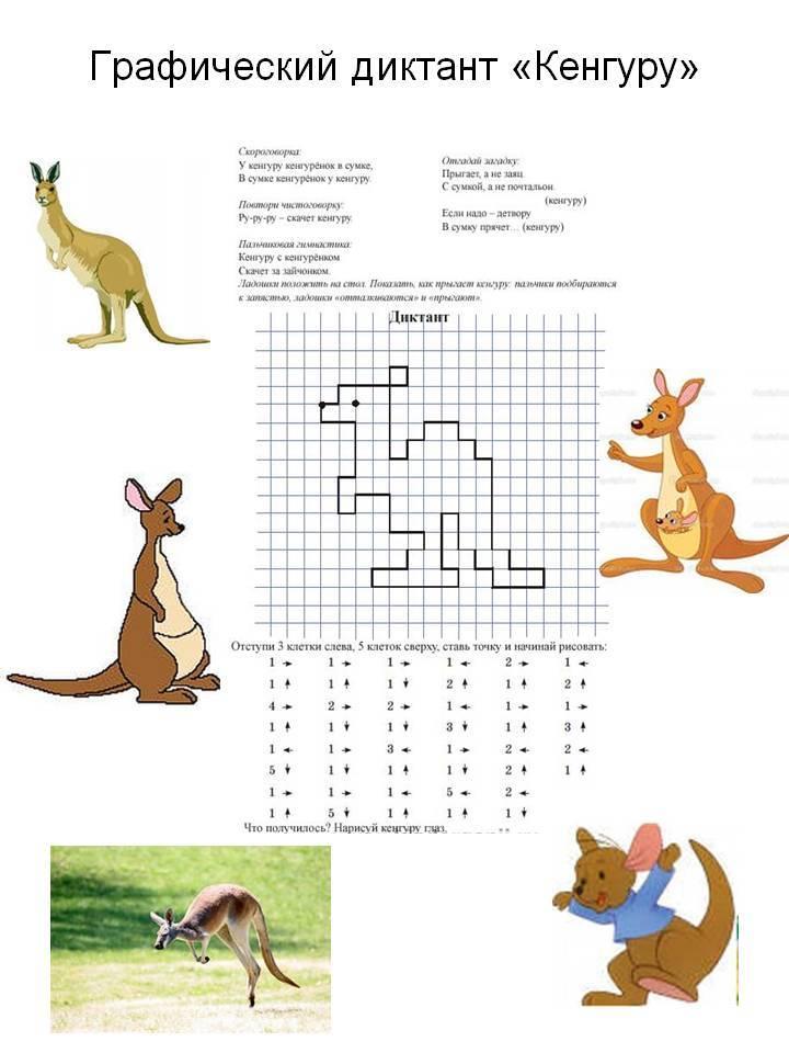 Графический диктант для дошкольников 6-7 лет по клеточкам