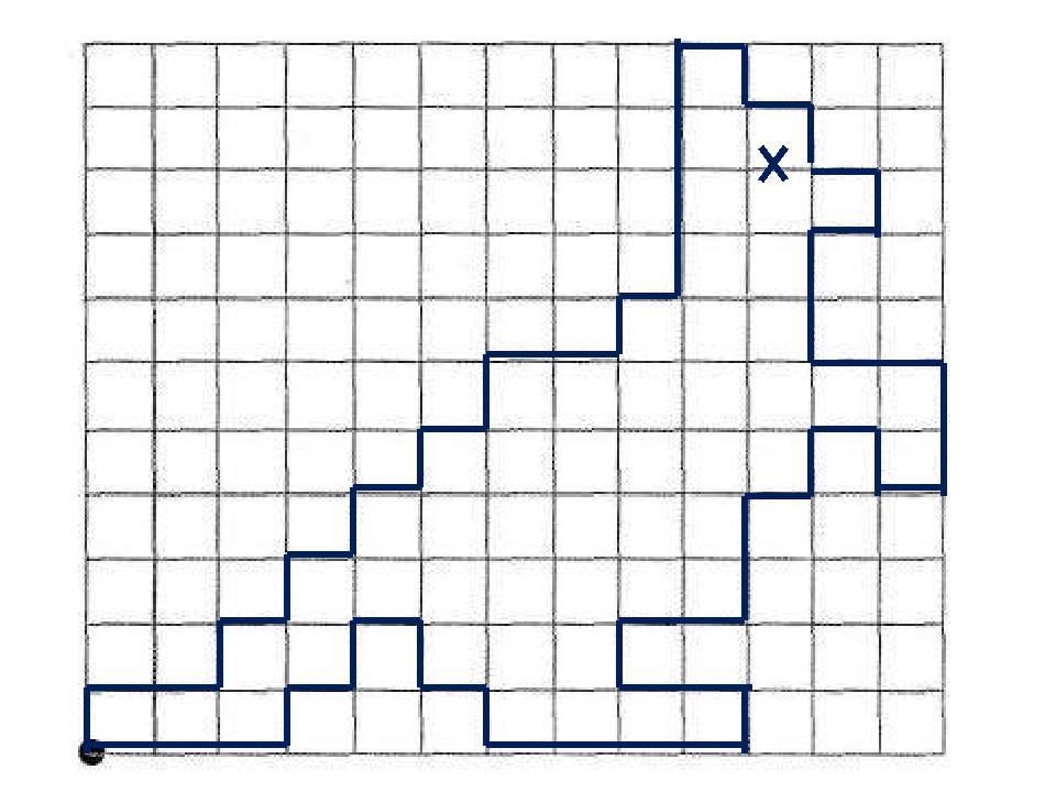 Графический диктант по клеточкам для 1 класса: математика по схемам, верблюд, носорог