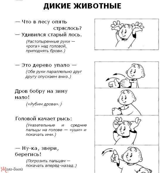 Пальчиковые игры для детей до года, 2–3, 3–4, 5–6 лет