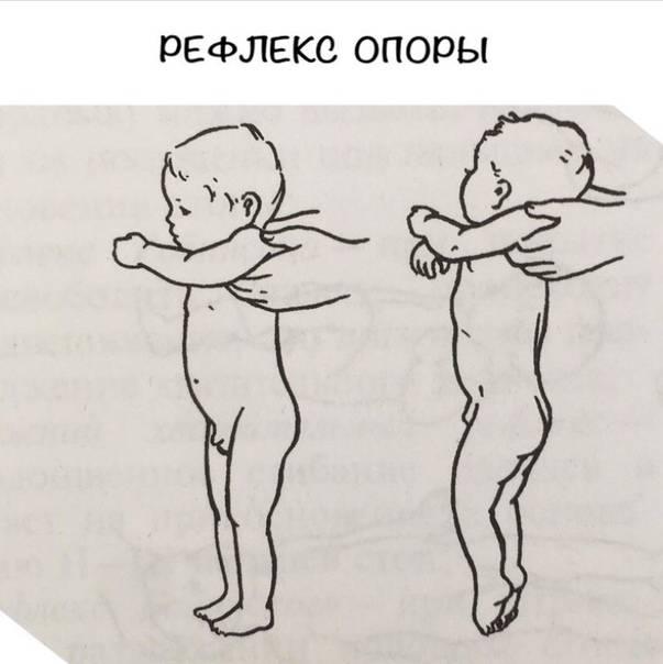 Когда и во сколько месяцев можно ставить ребенка на ножки