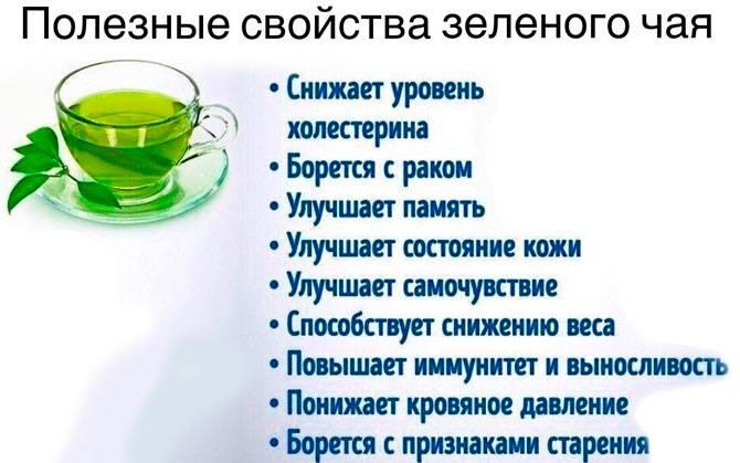 Чабрец. лечебные свойства и противопоказания для мужчин и женщин. фото