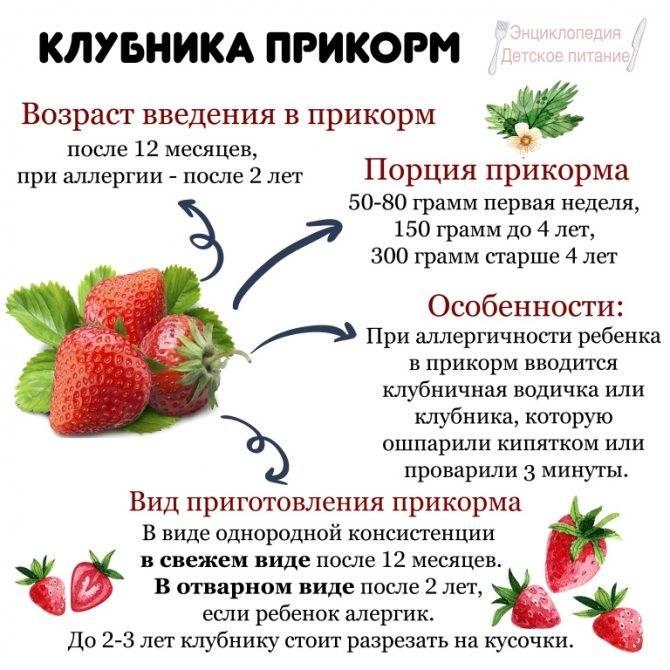 7 правил для отличного урожая голубики на supersadovnik.ru