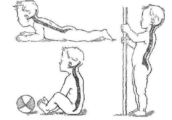 Как научить ребенка держать голову? упражнения лежа на животе для удержания головы в вертикальном положении