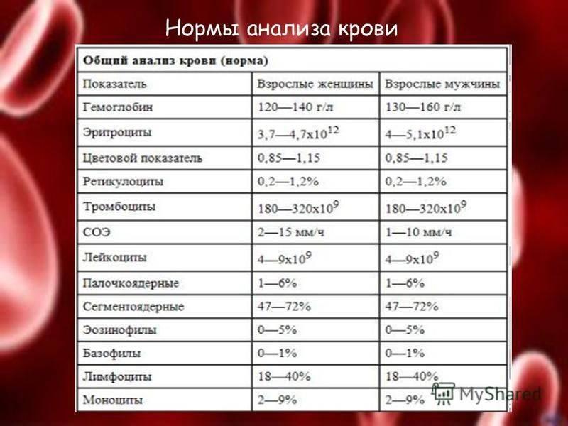 Клинический анализ крови.!