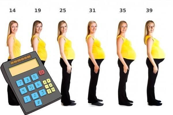 Калькулятор беременности и родов | университетская клиника