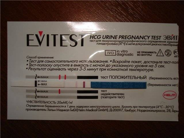Тест на беременность evitest