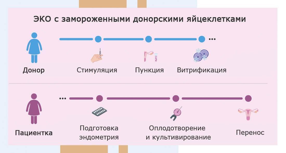 Стоимость икси в москве - институт репродуктивной медицины remedi