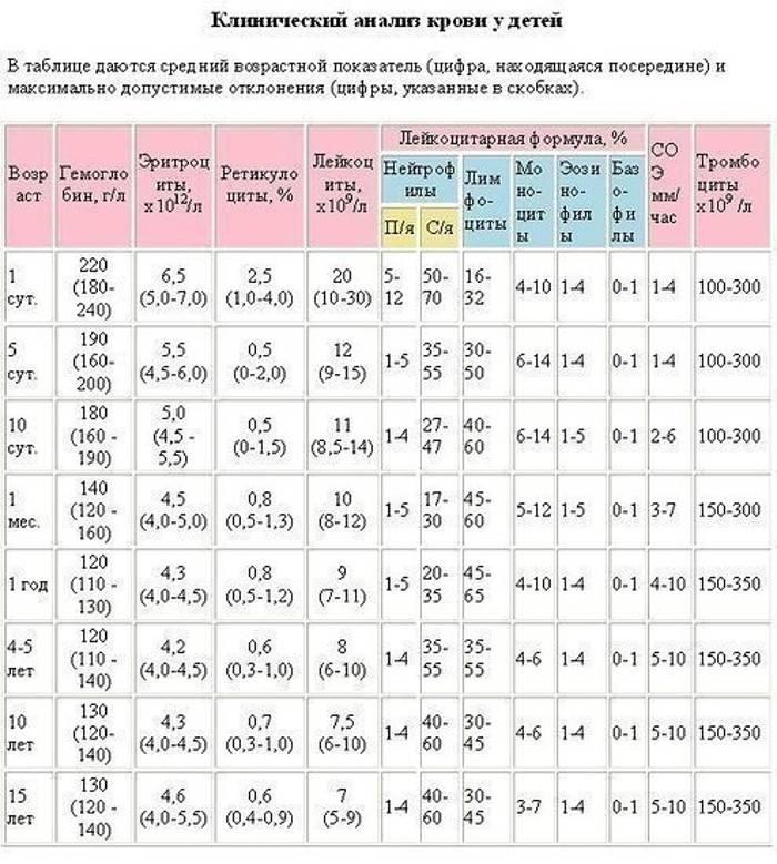 Wbc анализ крови у детей: расшифровка, норма