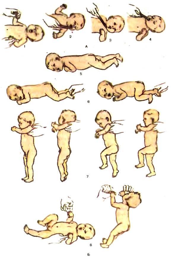 Рефлексы новорожденного ребенка   happy lady   счастливая женщина
