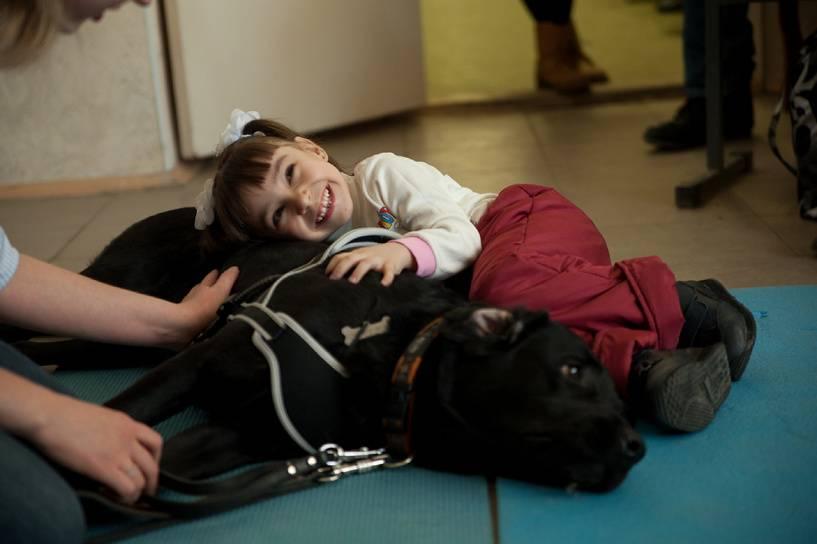 Собака-мотиватор: как канистерапия помогает детям и взрослым?