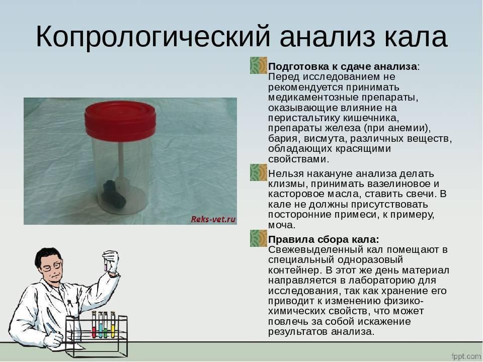 Как правильно собрать анализ кала у грудничка? – медицинский портал