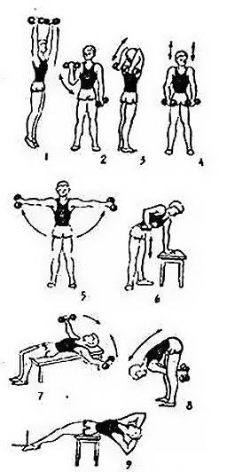 Эффективные тренировки с гантелями дома   musclefit