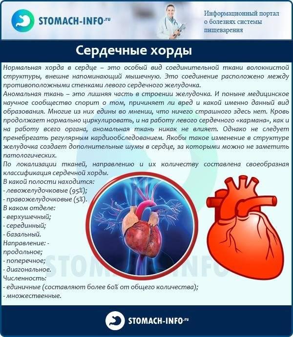 Дополнительная хорда всердце — лечение и профилактика заболеваний методами традиционной и народной медицины.