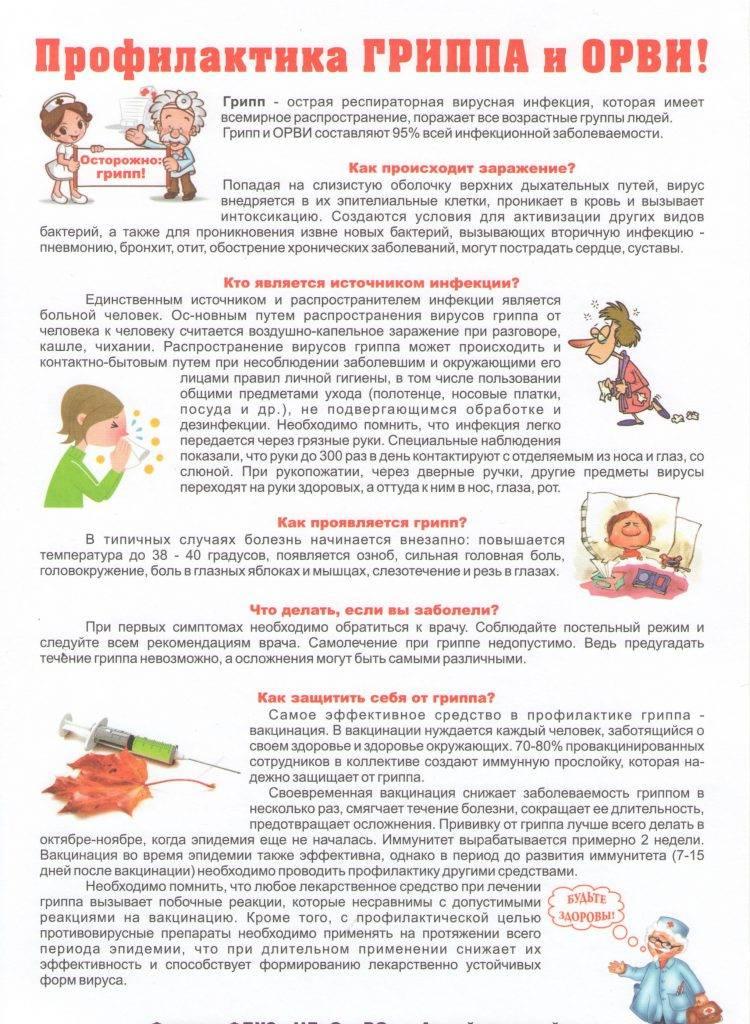 «береги свое здоровье». конспект занятия по профилактике гриппа в старшей-подготовительной группе. воспитателям детских садов, школьным учителям и педагогам - маам.ру