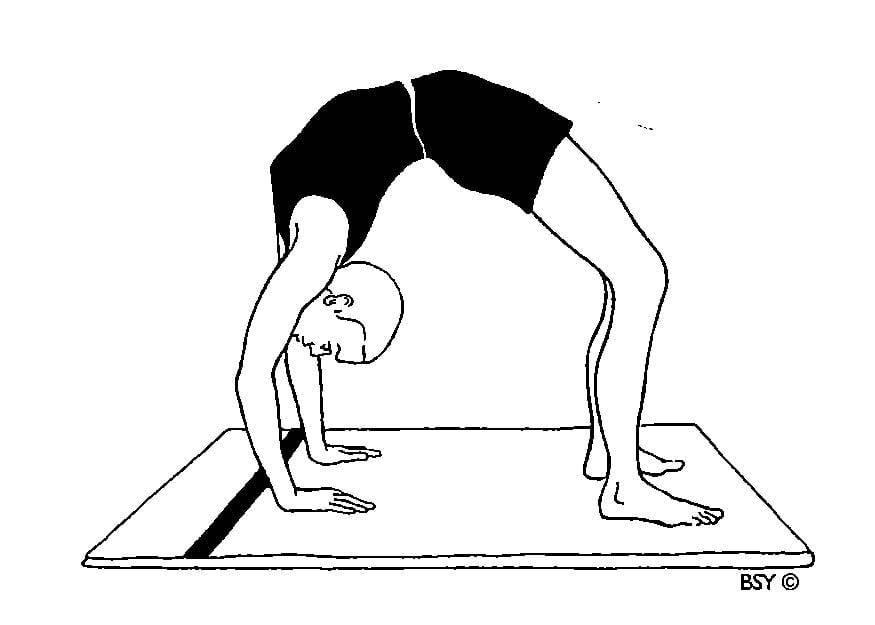Как научиться вставать из мостика. как научиться делать мостик – простая и эффективная методика