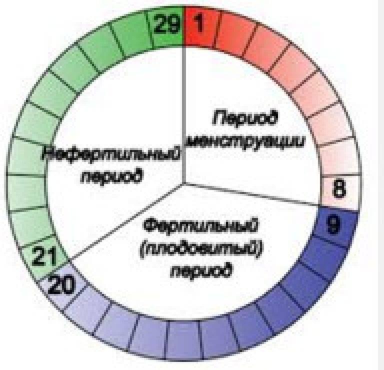 Как правильно определить фертильные дни и что это такое?