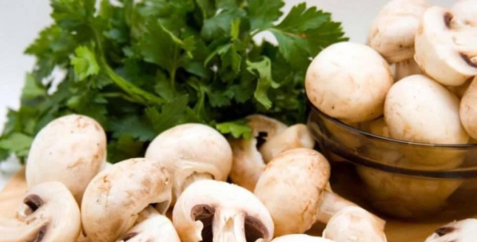 Можно ли при грудном вскармливании грибы: вред или польза?