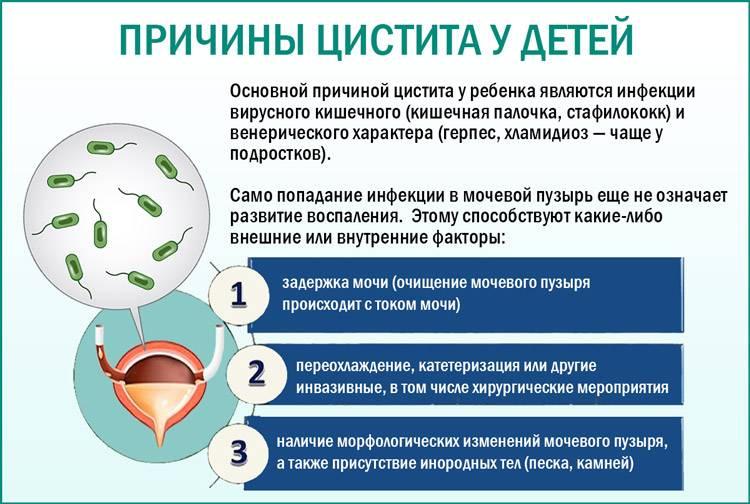 Цистит у детей в 2 года: лечение (таблетки, народные методы), симптомы, причины, формы, осложнения, профилактика