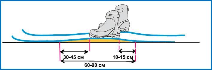 Как выбрать лыжи для конькового хода по росту, весу и бренду