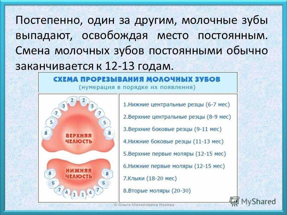 Лечение зубов у детей, цена лечения молочных зубов у ребенка.