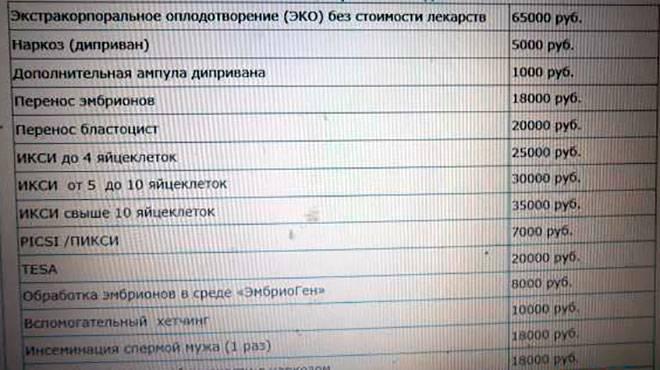 Сколько стоит ЭКО в России и от чего зависит стоимость процедуры?