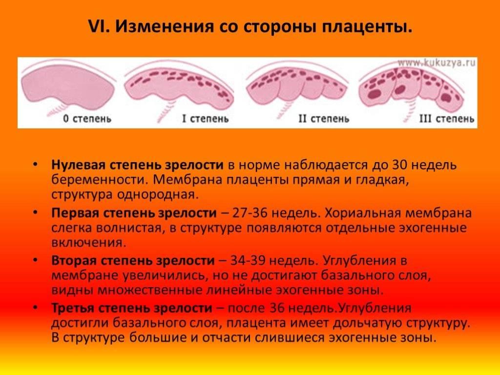 Неопухолевые изменения клеток эпителия
