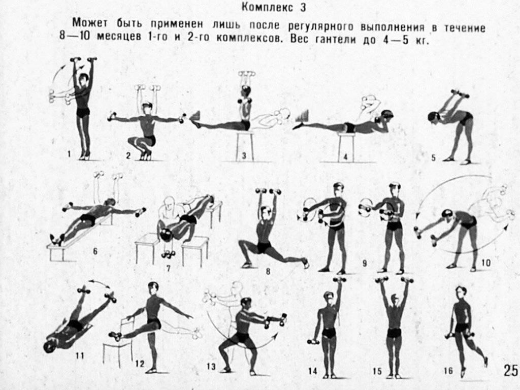 Гантели для детей: с какого возраста начинать занятия, вес гантелей, лет — www.wday.ru