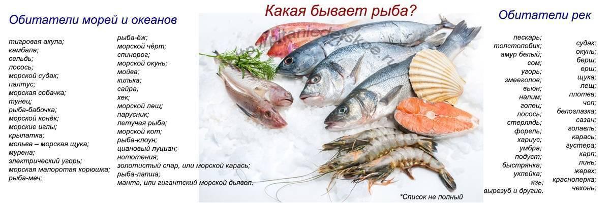 Питание ребенка: рыбный стол. как выбрать рыбу для первого прикорма