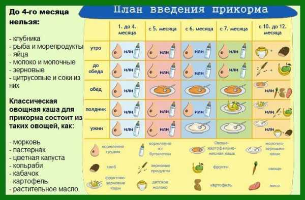 С какого возраста можно давать ребёнку яйца: желток и белок для грудничков, как и когда начинать вводить продукт, рецепты и прочее medistok.ru - жизнь без болезней и лекарств