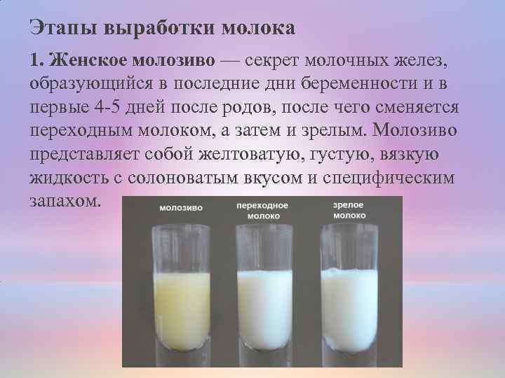 Как образуется грудное молоко?