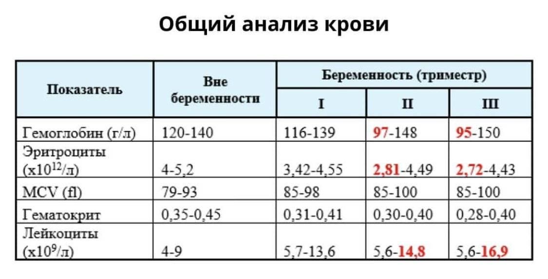 Норма гемоглобина при беременности во 2 триместре и отклонения от нормы