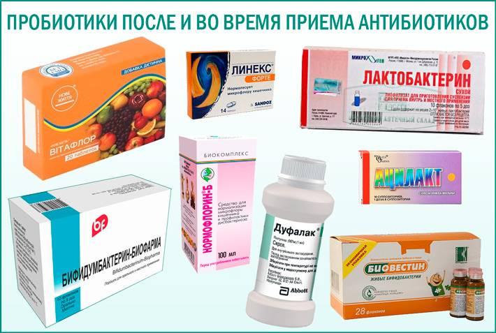 Как связаны пребиотики и пробиотики с иммунитетом? - причины, диагностика и лечение