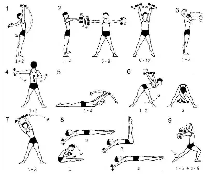 Лучше упражнения с гантелями для дома и зала   musclefit