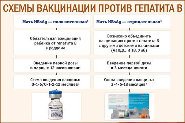 Профилактическая прививка от гепатита а