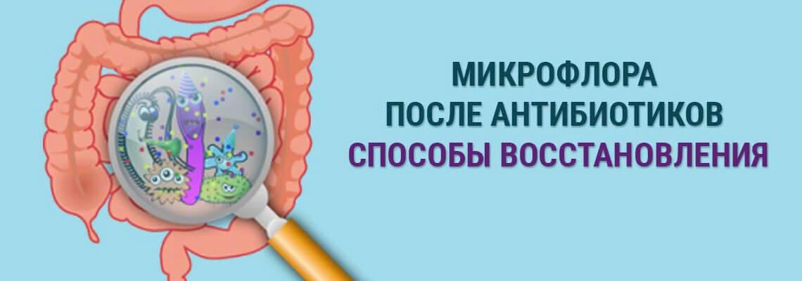 Возникновение дисбактериоза после антибиотиков. бифилакт биота   биота