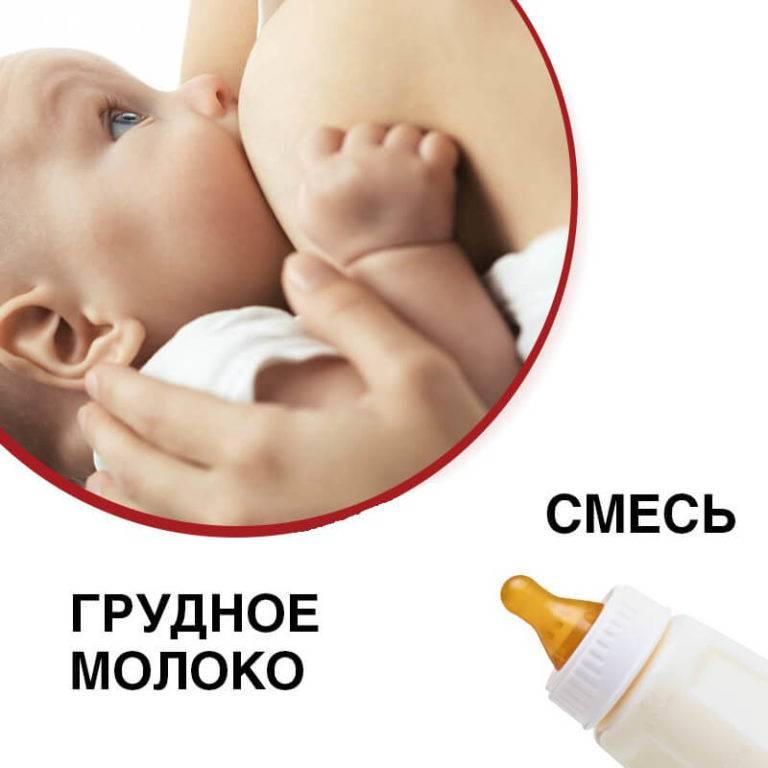 Кормление грудным молоком или смесью, какой вариант полезнее и проще
