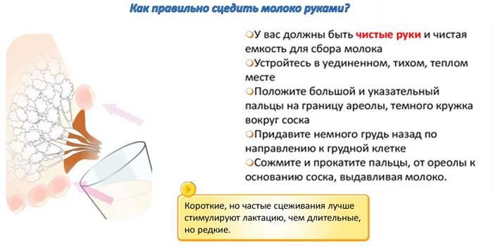 Как правильно и безопасно сцеживать грудное молоко руками